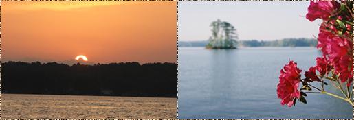 Lake Martin Economic Alliance